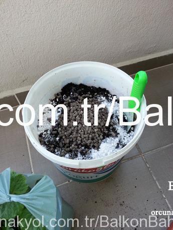 fidan ekimi toprak hazırlığı